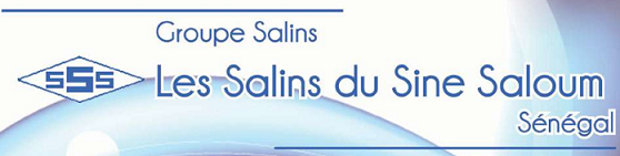Logo Les Salins du Sine Saloum
